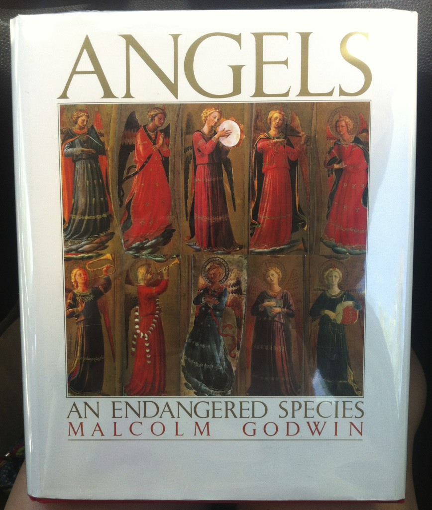 Angels_book